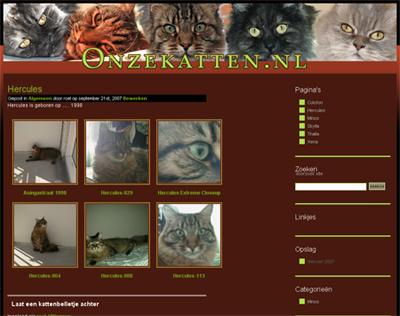 Onze Katten.NL